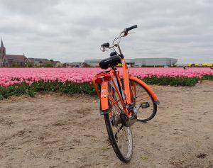 Olanda-in-bicicletta