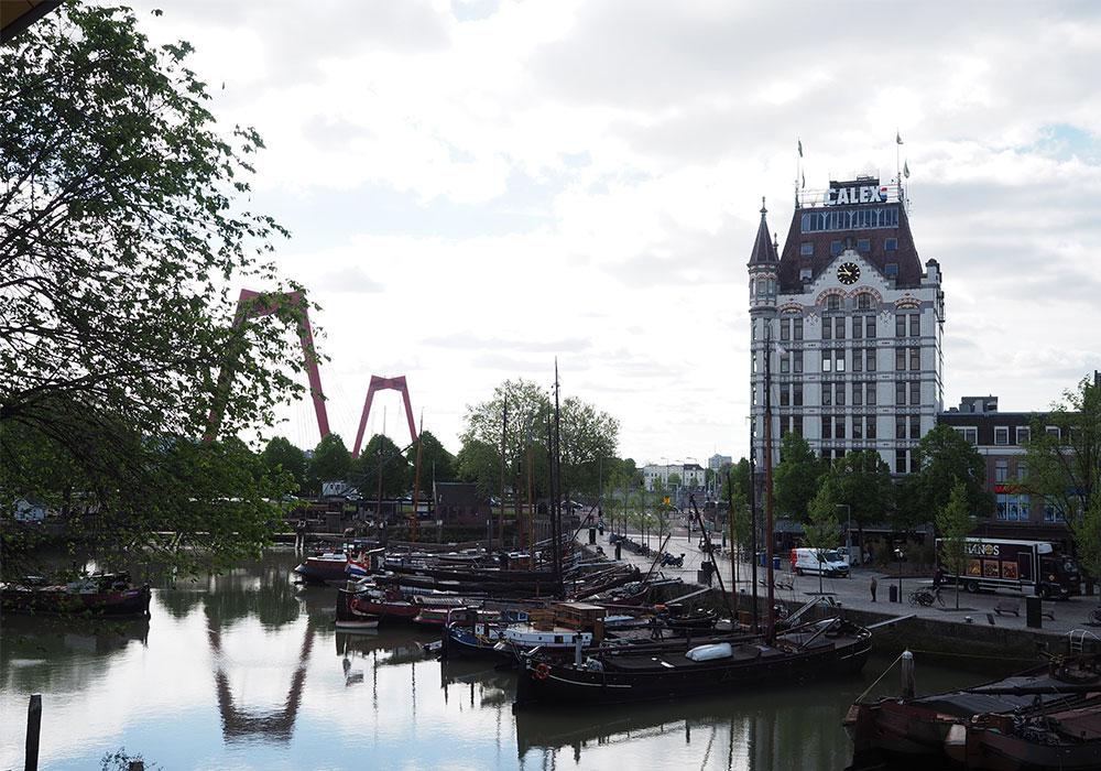 Willemsbrug e il vecchio porto di Rotterdam